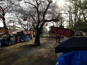 高稲荷公園花見桜